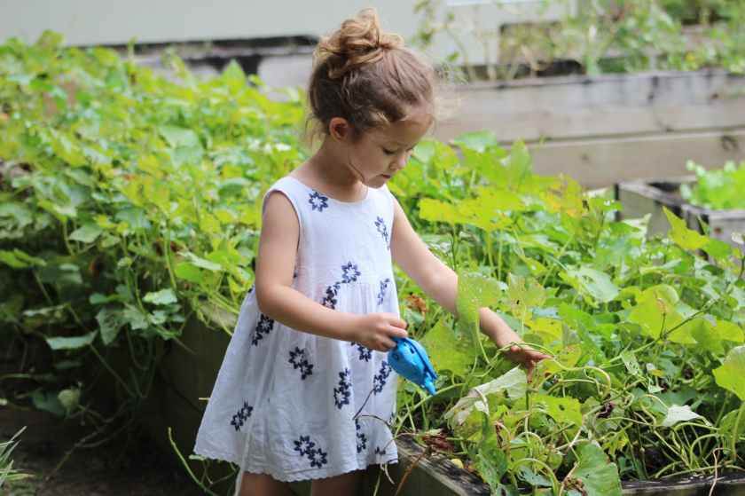 girl growing vegetables